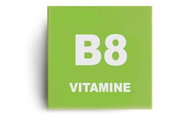 Vitamine B8 (biotine)