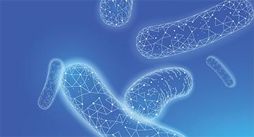 Dysbiose du microbiote intestinal, quelles sont les causes de ce déséquilibre?