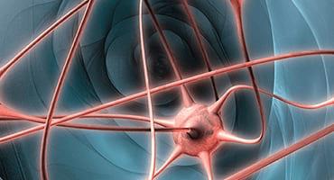 Comment favoriser le fonctionnement cérébral