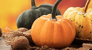 Couleurs et saveurs d'automne dans nos assiettes