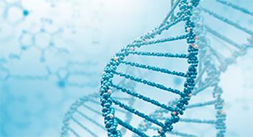 Notre alimentation peut influencer nos gènes !