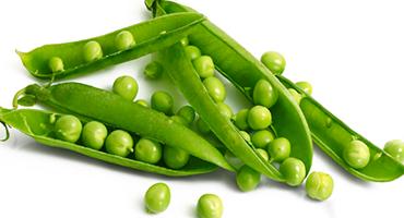 Les légumineuses, source de protéines végétales aux nombreux bienfaits
