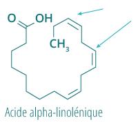 Acide alpha-linolenique