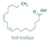 Acide linoleique