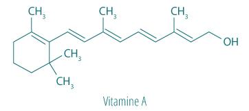 Molécule Vitamine A