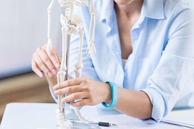 Squelette-ossature-calcium