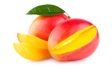 manguier