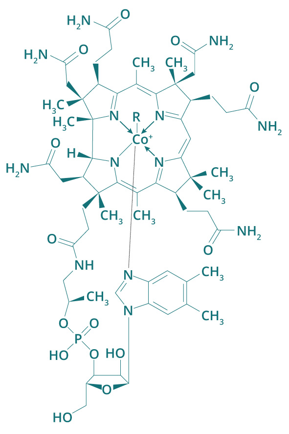 Molécule Vitamine B12