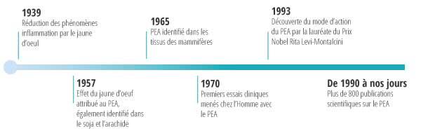 Timeline PEA