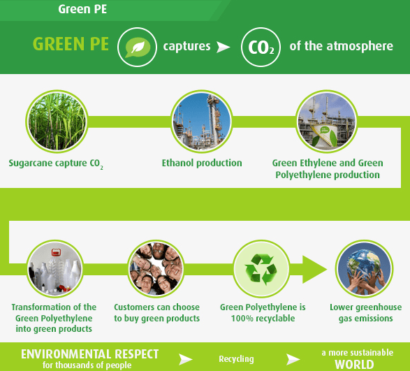 Infographie du Cycle I'm green