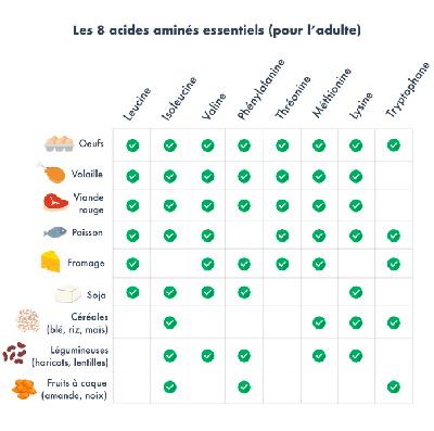 Listes des acides aminés essentiels